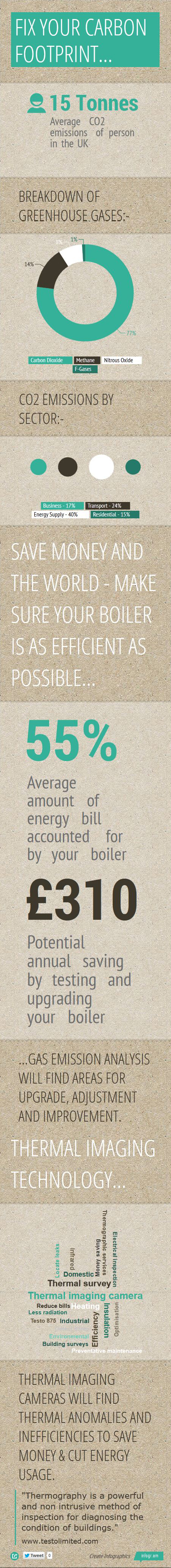 INFOGRAPHIC - Carbon Footprint